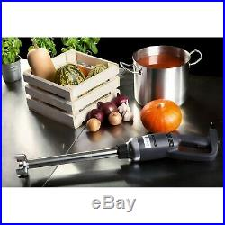 Commercial Blender Speed Hand Mixer Kitchen Food Processing Stainless Steel 500W